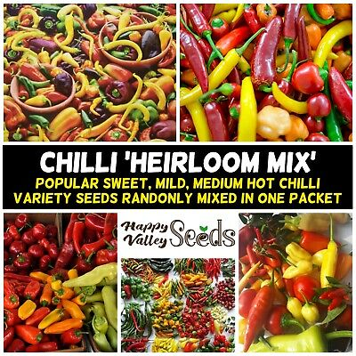 MIX CHILLI 35+ Seeds ALL TYPES chili pepper MIXED spring summer vegetable garden