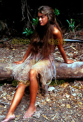 "Photo - Brooke Shields in a scene, ""The Blue Lagoon"", 1980"