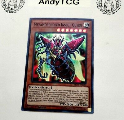 Metamorphosed Insect Queen - 1St Ed Super Rare M/Nm Led2-En008 - Yugioh