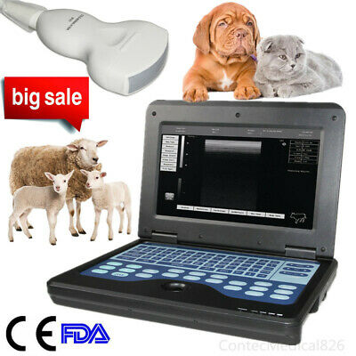 Portable Veterianry Ultrasound Scanner 3.5Mhz Convex Probe Laptop Machine Animal