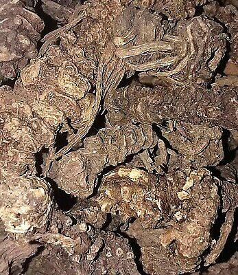 Organic Valerian Root - Valeriana officinalis - Apothecary Wicca Dried Herb