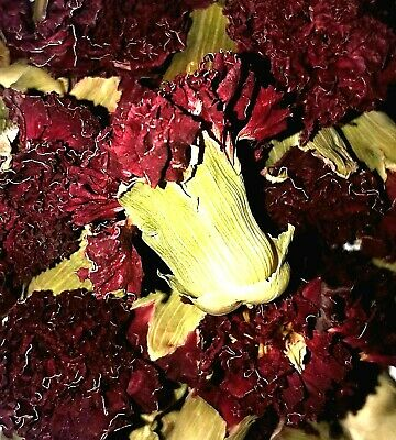 Organic Dried Carnation Flowers - Dianthus caryophyllus - Apothecary Wicca Herb