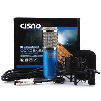 CLEARANCE SALE Pro Studio Condenser Microphone Recording Mic Kit w/ Shock Mount