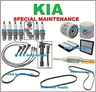 Belt Tune Up Kit for 1997 1998 Ford Expedition Vin6 Spark Plug Wire Set Filter