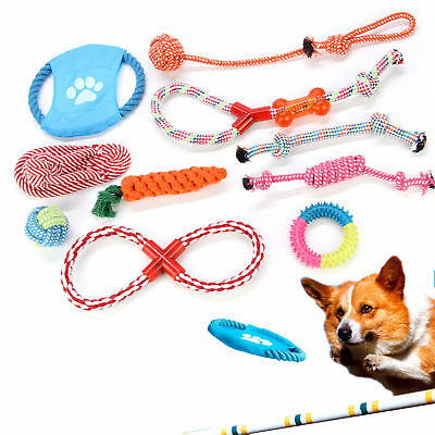 NEW 10Pcs Dog Rope Toys Tough Strong Chew Knot Teddy Pet Puppy Bear Cotton Toy