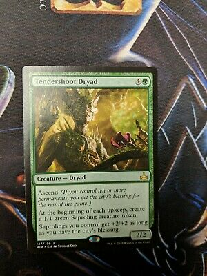 x1 Tendershoot Dryad MTG Rivals of Ixalan R M/NM, English