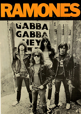 53. THE RAMONES V3 VINTAGE BAND ALTERNATIVE ROCK CONCERT MUSIC POSTERS A4 300gsm
