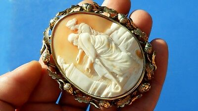 STUNNING ANTIQUE Victorian VERY RARE Large Natural Shell rare CAMEO ACORN Brooch
