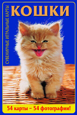 54 Cats Photo Playing Cards Russian Souvenir Poker Deck NEW