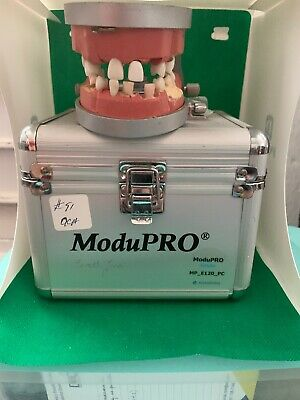 ModuPro Endo Dentoform Acadental (extra Sextants Included)