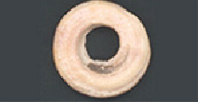 Celtic Shell-Ring Money – Central-Southern Europe- ca. 200 B C