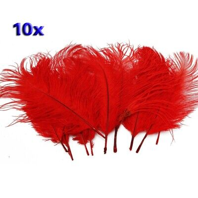 2X(10pcs Home Decor Red Ostrich Feathers V7G1)