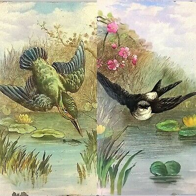 "Antique Tiles Hand Painted Kingfisher & Swift Victorian Bird Fireplace ≈ 9"" x 6"""