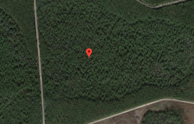 9.00 Acres, White Springs, Fl, Foreclosure Ready Today, Nr, Land Market Is Huge