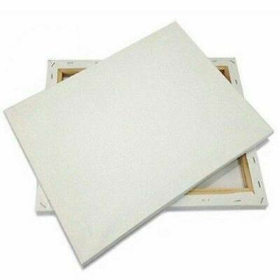 Blank Stretched Gesso Primed Painting Canvas -Thin or deep (art artist acrylic)