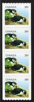 2014 Canada SC# 2713 Baby Wildlife Atlantic Puffin strip of 4 Lot C 606 M-NH