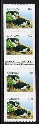 2014 Canada SC# 2713i Baby Wildlife Atlantic Puffin Gutter strip of 4 #C607 M-NH