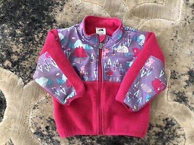 0d5ff7e69 THE NORTH FACE Seashore Fleece Hoodie Baby Toddler Size 3T - $59.00 ...