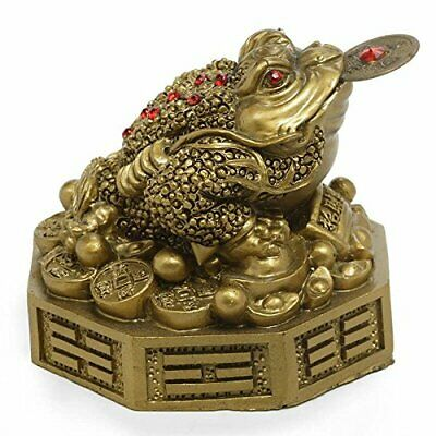 Feng Shui Money Frog Showpiece for Prosperity and Good Luck | Wealth Statue