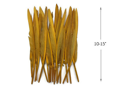 10 Pieces - Old Gold Goose Pointers Long Primaries Wing Feathers Costume Angel