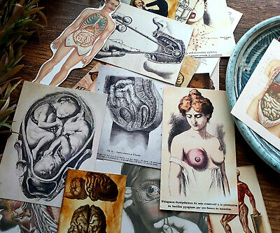 50 Weird Oddities Vintage Medical Doctor Student Nurse Gifts Junk Journal Card