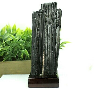 "Raw 8.5"" Tall Natural Black Tourmaline Crystal Point Wood Base 3.10 lb BT78E"