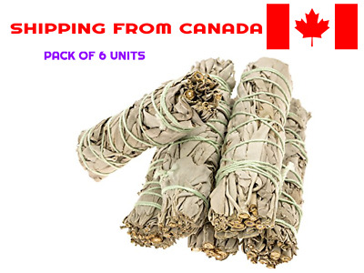6 Pack - Premium California White Sage Smudge Sticks (4inch)**FROM CANADA**