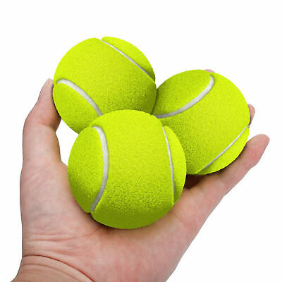 Tennis Balls Dog Pet Toy Pets Bouncing Sports Games Ball Fun Outdoor Cricket