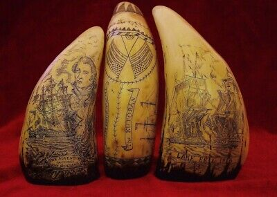 Faux scrimshaw 3 Museum Quality Teeth The Adventure, The Kutoran & The Lake Erie