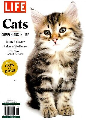 Life Magazine 2019 Rulers of the House Kittens Companions in Life CATS