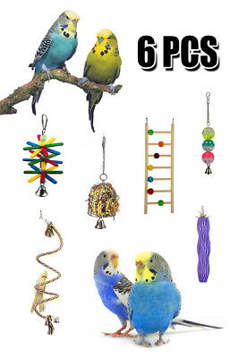 6pc Bird Parrot Toy Combination for Small Parrot Budgie Parrotlet Lovebird