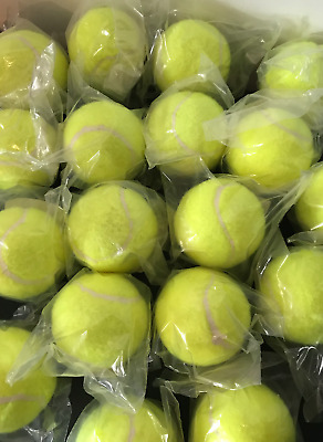 100 Tennis Balls Bulk Job Lot Dog Machine Dog Toys **Brand New Sealed**