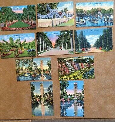 Florida Linen Postcards Lot Of 10 Vintage Cards 1930s-1945 Unposted Floral Fruit