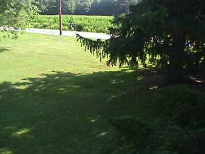 Town  Lot Main St. Trappe, Md.21673 60' X235' , 75% below assessed value.