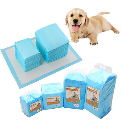 2 Size Pet Diaper Ultra Absorbent Dog Training Pee Pads Odourless Puppies Toilet