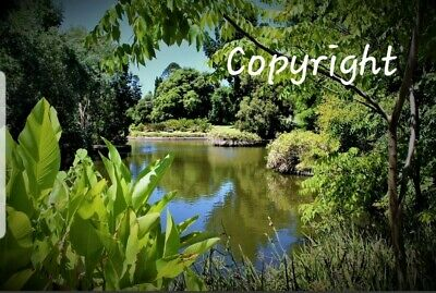 Photo, wallpaper digital picture free worldwide email delivery - Adelaide River