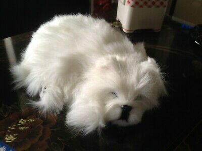 Perfect Petzzz Westie - Clearance Bargain  The Best Gift Around. Eye Catching..