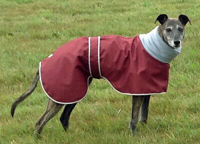 Factory Second - Greyhound Polo Waterproof Dog Coat. Made In The Uk.