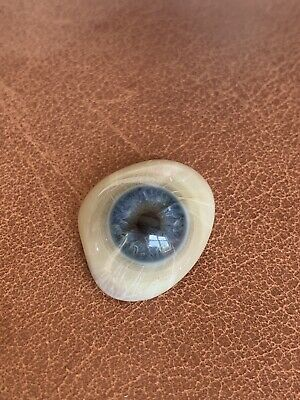 1910-1930s Prosthetic Glass Eye Vintage Antique Blue With Document