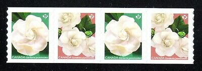 2019 Canada SC# Flowers - Cape Jasmine Gardenia - strip of 4 from coil M-NH