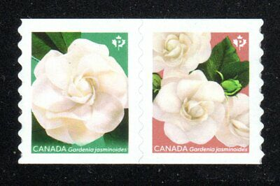2019 Canada SC# Flowers - Cape Jasmine Gardenia - pair from coil M-NH