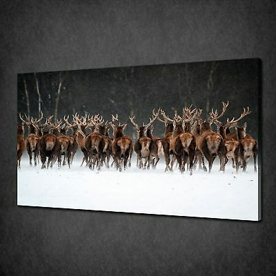 HERD OF DEERS LANDSCAPE WALL ART CANVAS PRINT PICTURE VARIETY OF SIZES