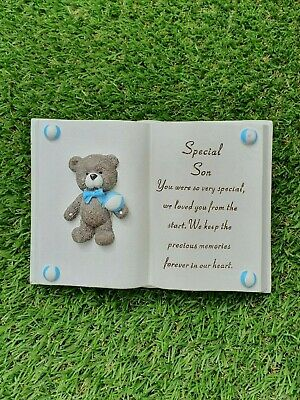 Baby Blue Grave Memorial Special Son Raised Open Book Tribute Stone