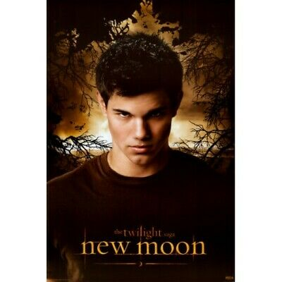 Twilight New Moon Jacob POSTER 61x91cm NEW Taylor Lautner