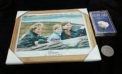 Princess Diana Framed Photo With Harry And William ~ Coin And Tribute Cassette