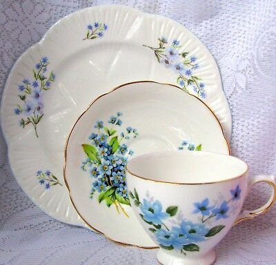 Forget Me Not Teacup Trio Queen Anne Teacup & Grosvenor Saucer & Shelley Plate
