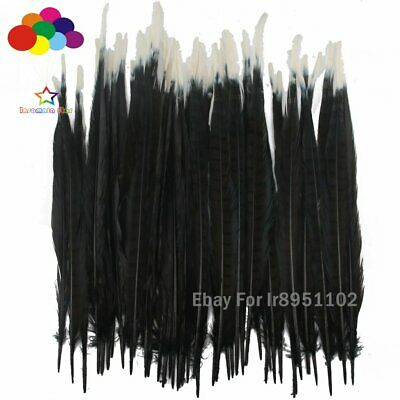 10-100Pcs 40-45cm Two Color Black and white Dyed Ringneck Pheasant Tail Feathers