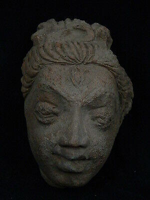 Ancient Large Size Teracotta Head Bactrian C.300 BC #SG4048