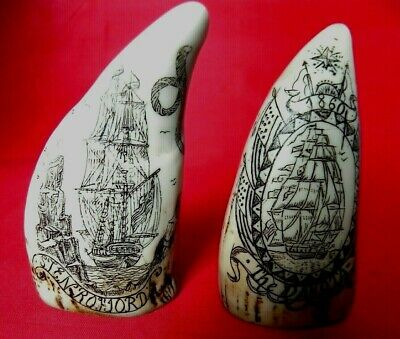 Miniature Scrimshaw Teeth The Stenrofjord & The Dakota Cabinet Display Quality
