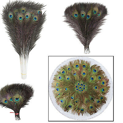 10-100pcs Peacock Tail Feathers Feather Natural Bouquet Home Room DIY Decoration